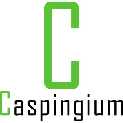 Logo Caspingium